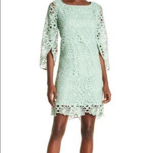 Nanette Lepore seafoam green lace shift dress 8